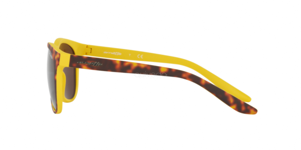 Occhiali da Sole Unisex Arnette Go time AN 4227 239273