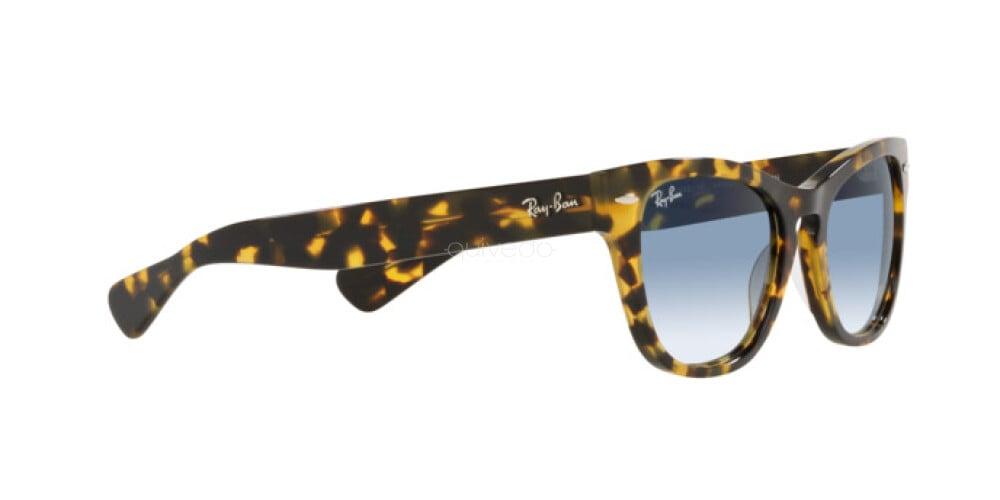 Occhiali da Sole Unisex Ray-Ban Laramie RB 2201 13323F