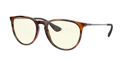 Ray-Ban Erika Everglasses Clear Evolve RB 4171 (865/SB)
