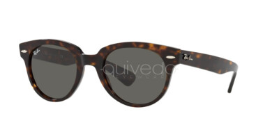 Ray-Ban Orion RB 2199 (902/B1)