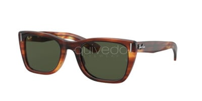 Ray-Ban Caribbean Legend Gold RB 2248 (954/31)