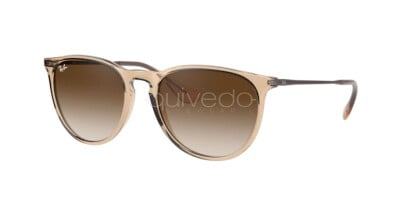 Ray-Ban Erika Color Mix RB 4171 (651413)