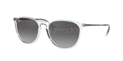 Ray-Ban Erika Color Mix RB 4171 (651611)