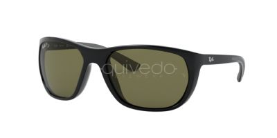 Ray-Ban RB 4307 (601/9A)